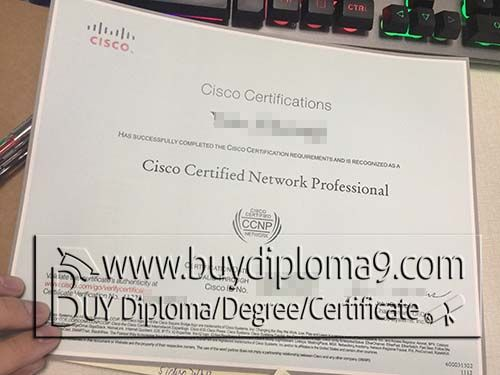 Best 25 university diploma ideas on pinterest monster cisco is the worlds leading provider of network solutions yadclub Gallery