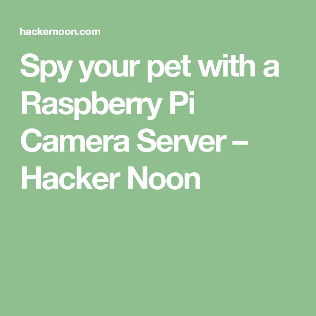 Spy your pet with a Raspberry Pi Camera Server – Hacker Noon
