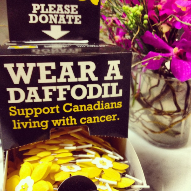 Pick up a Daffodil Pin at locations across the country and support the Canadian Cancer Society. #daffodil #cancer