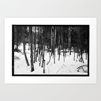 NORWEGIAN FOREST IX Art Print by Plasmodi - $17.00