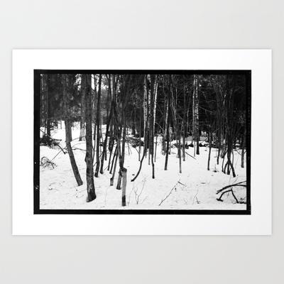 NORWEGIAN FOREST IX Art Print by Plasmodi - $17.00