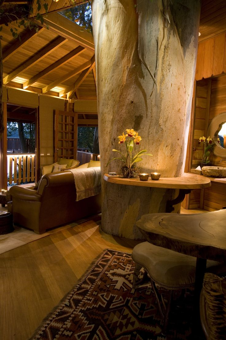 Inside of the centenary eucaliptus tree house.  Tarzan wouldn't mind the confort and neither us.  Built by Casa na Árvore Ltda - 2007