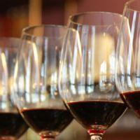 5 tipos de taninos del vino | Esnobismo gourmet