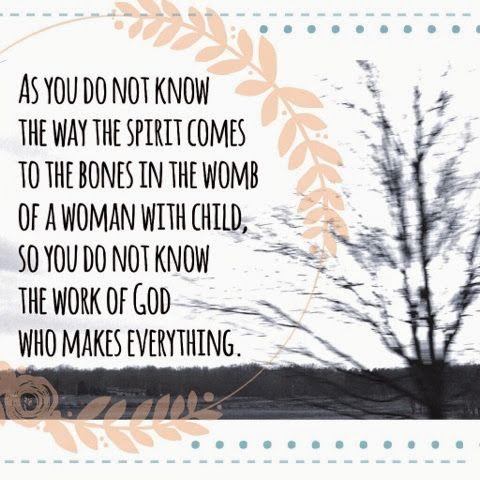 ecclesiastes 11:5 - Google Search