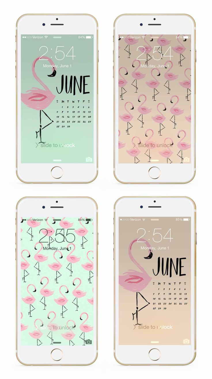 June flamingo phone + desktop wallpaper backgrounds by May Designs! | Download: http://www.maydesigns.com/m/digital-wallpapers-june-2015