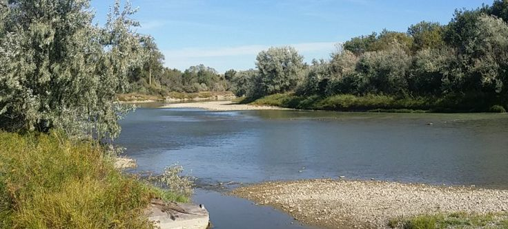"""Scott Western Realty #sequim #real #estate http://real-estate.nef2.com/scott-western-realty-sequim-real-estate/  #billings montana real estate # Menu Clarks Fork River Ranch River front hunting/fishing ranch for sale on the Clarks fork river, south of Edgar MT. Water well, septic tank & drain field already installed (licensed and Approved) for new home to be built! """" /> Clarks Fork River Ranch River front hunting/fishing ranch for sale on the Clarks fork river, south of Edgar MT. Water well…"""