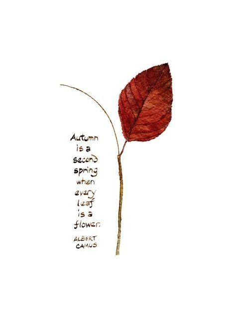 L'autunno è una seconda primavera, quando ogni foglia è un fiore. - ALBERT CAMUS