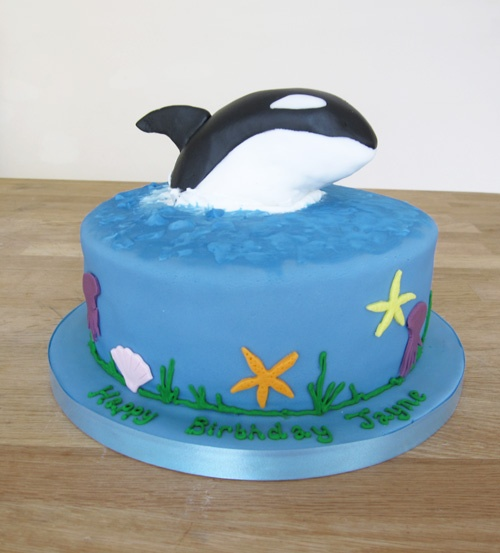 Killer Whale Birthday Cake by The Cakery | www.thecakeryleamington.co.uk