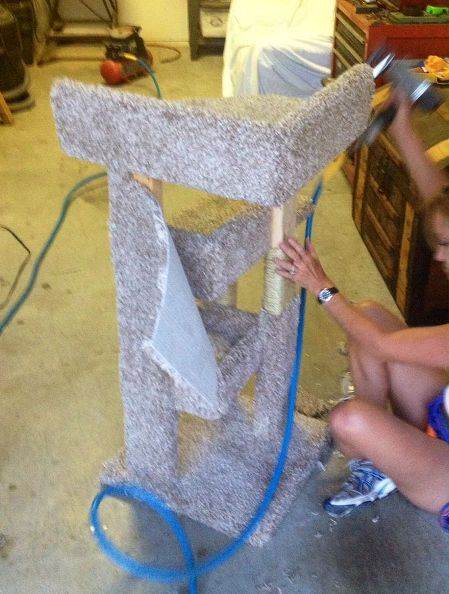 diy kitty scratching post bed build, diy, pets animals, woodworking projects, Scrap carpet pieces and a staple gun can do wonders