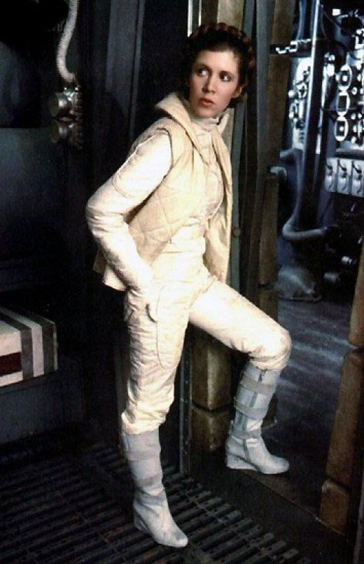 Princess Leia Hoth Hair The Costumes of Star W...