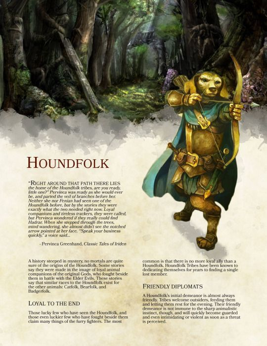 DnD 5e Homebrew (Search results for: #Race)