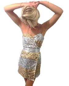 Silver and Gold Sequin Wrap Dress