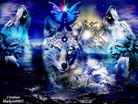 3d Ice Wolf Wallpaper Wolves Fantasy Art Wolf Wolf Wallpaper Wolf Pictures