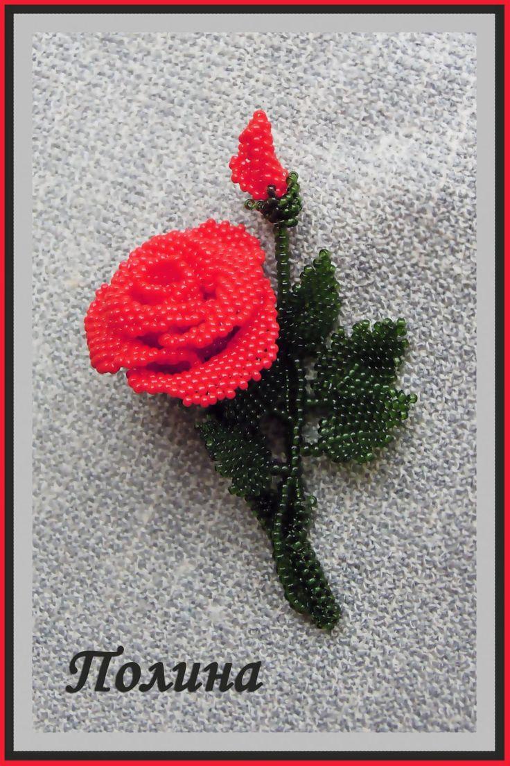 Роза красная классическая.
