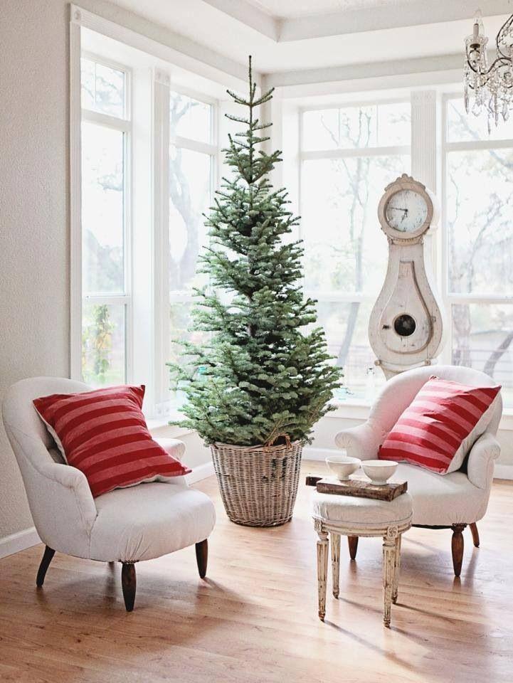 Christmas tree! Yaaay!