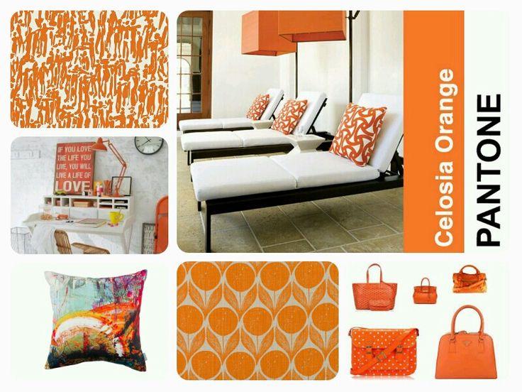 Wallpaper trend celoisa orange