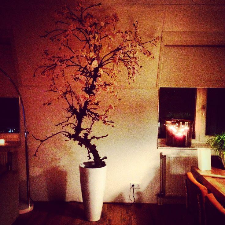 24 best images about decoratie binnen buiten on pinterest jars nature and center pieces - Ad decoratie binnen ...