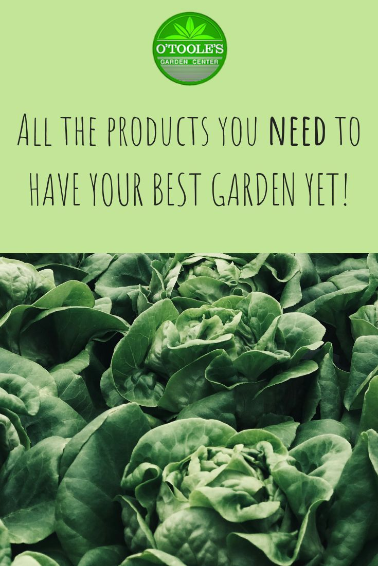 Looking To Have Your Best Garden Yet Click Through To Shop All