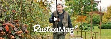 Comment hiverner un géranium chez soi sans prendre trop de place. Les conseils en vidéo;Hubert le jardinier.
