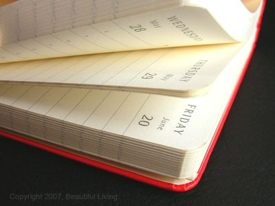 Moleskine Red Daily Planner, Large