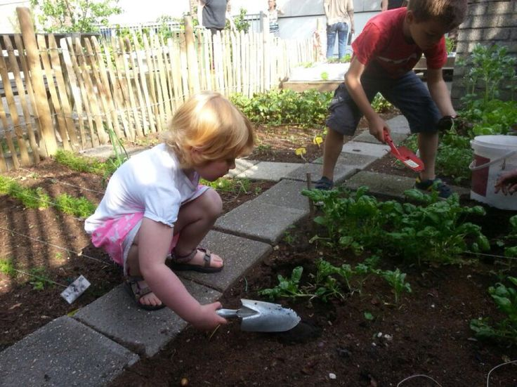kinderen groentetuin