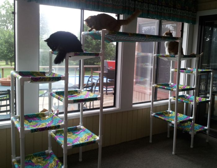 cat tree from pvc piping so awesome cattery ideas