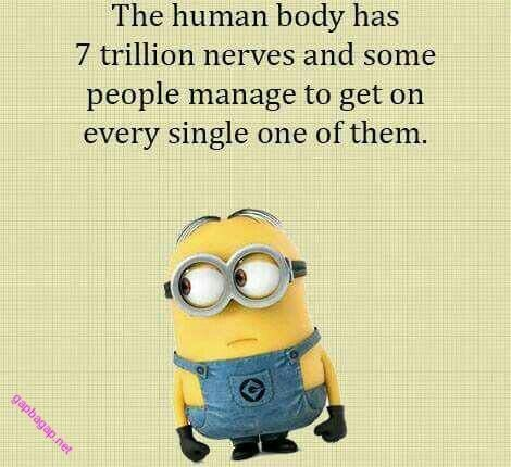 #Funny #Minion #Quote About Human Body vs. Nerves