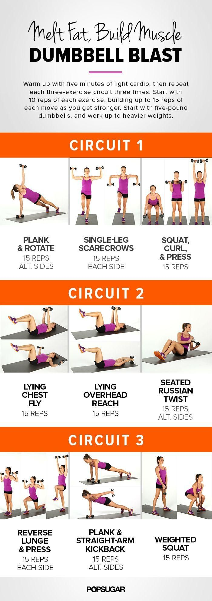 Dumbbell Blast Workout // melt fat, build muscle #freeweights #strong #fitness Check out Facebook: www.facebook.com/...