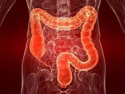 No one wants to broach the subject, but damn it people, get that colon clean!