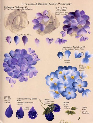 DONNA'S BASIC STROKES - Hydrangeas & Berries Worksheet