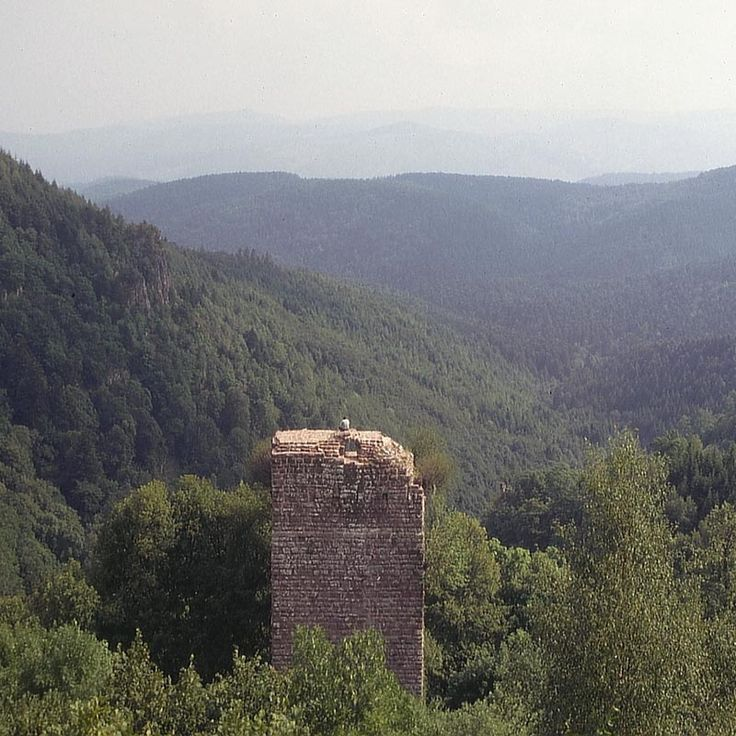 Perdu en pleine forêt, surplombant une belle cascade et un chapelet de falaises, les vestiges du Château du Nideck ont tout de la ruine romantique. Il y eut à une certaine époque 2 châteaux distincts sur le site, témoins du morcellement extrême de l'Alsace médiévale. La place est abandonnée après un incendie au 17°s