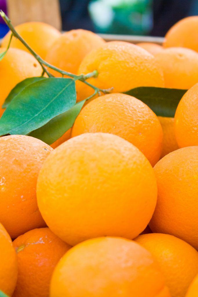 Oranges of Antalya, Turkey