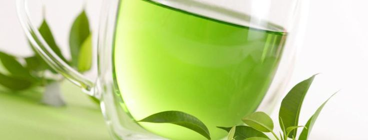 cup-of-green-tea-download