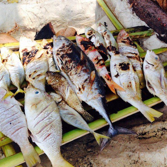 【compathy_travel】さんのInstagramをピンしています。 《ランチは離れ島でローカルの方が釣ってくれたお魚を焼いて食べました!ワイルドです!! #ワイルド #ランチ #釣り #魚 #自然遺産 #インドネシア #海 #バーベキュー #カリムンジャワ #秘境 #離島⠀ #Compathy #コンパシー #ワンダーラスト #wanderlust #travel #旅 #旅行 #海外旅行 #海外 #tagsforlikes #YOLO #follow #旅好き #旅好きと繋がりたい #写真好きと繋がりたい》