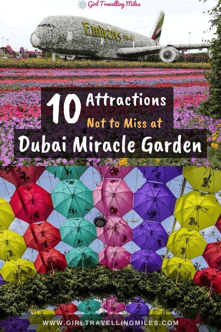 Dubai Miracle Garden Fairyland build with Flowers [+10