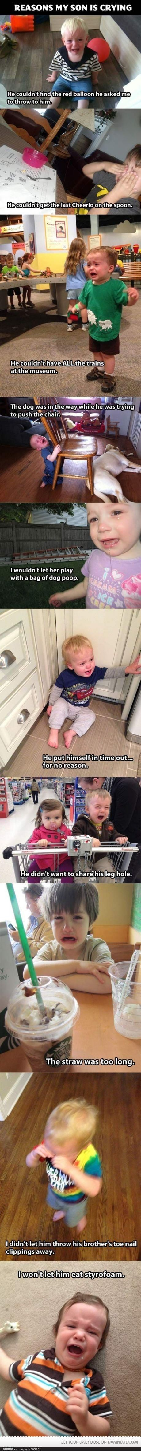 best giggles images on pinterest funny stuff funny things and