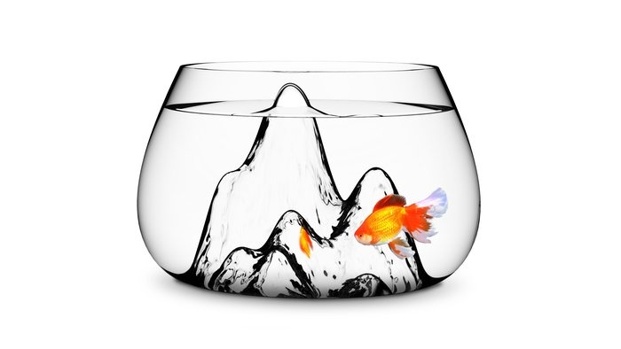If I had a simple betta bowl, this is what I would
