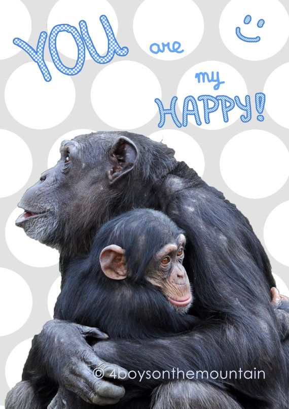 """Wall Art Chimpanzee Quote """"you are my happy"""" so sweet for a nursery!   von 4BoysontheMountain"""