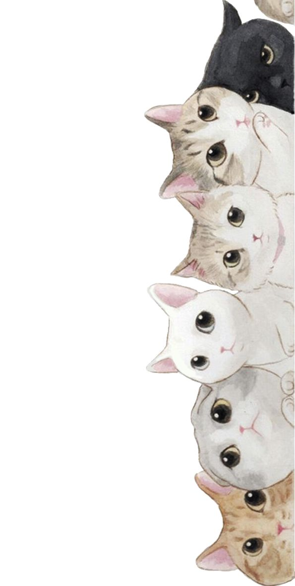 Kotiki Dizajn Pinterest Iphone Wallpaper Wallpaper And Cute