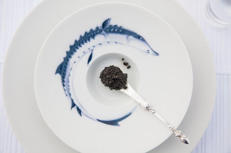 Angeln Sie sich einen Stör: Appetitanregend ist dieses Amuse Bouche Bisquitporzellan der Serie Ocean von Hering Berlin. Ein beliebtes Tischgeschirr im Söl'ring Hof Sylt. Ideal zum Servieren von kleinen Köstlichkeiten wie Olivenöl, Tastings oder Kaviar.