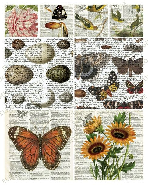 Printable Collage Sheet No 005