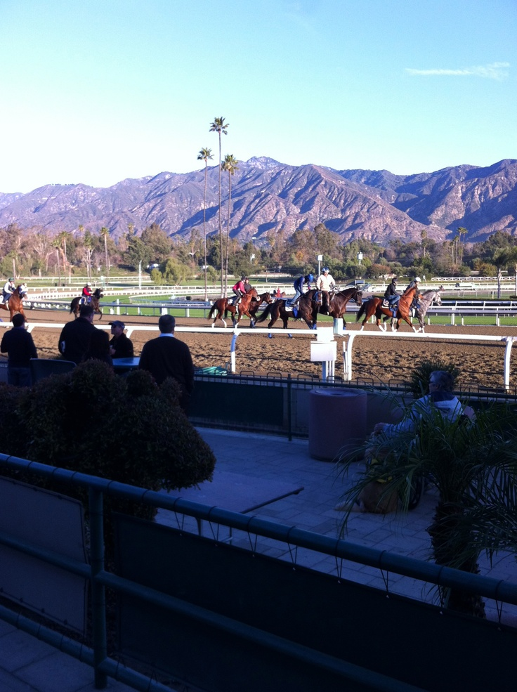 11 Best Images About Santa Anita Racetrack On Pinterest