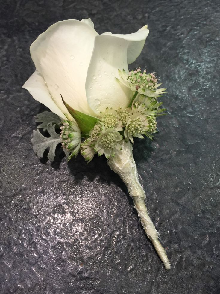 Boutonniere: Akito White Rose, Silver Leaf, White Astrantia, tied with with satin lace ribbon.