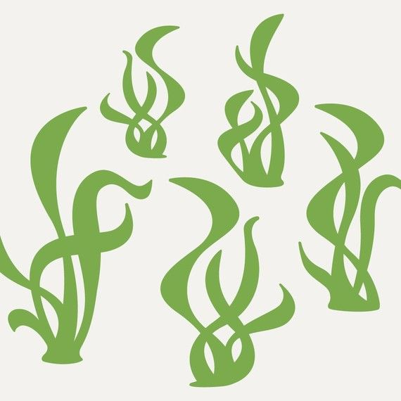 Seaweed Wall Decal Stickers for Ocean theme by graphicspaces, $20.00  On the sea floor Design Idea
