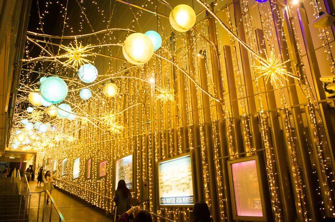 「新宿テラスシティイルミネーション」新宿駅周辺で開催 - マカロンカラーの電飾が街を鮮やかに染める   ニュース - ファッションプレス