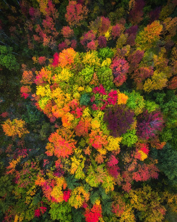 We Drove Through Every State In Northeast US To Photograph The Beauty Of Fall | Bored Panda
