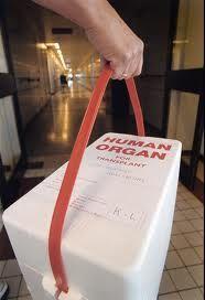 niertransplantatie:    Transplantatie en dialyse zijn de twee enige mogelijkheden om mensen met terminale nierinsufficiëntie te behandelen. In Nederland leven meer dan 3000 mensen met een niertransplantaat.    http://www.menselijk-lichaam.com/nieren/niertransplantatie