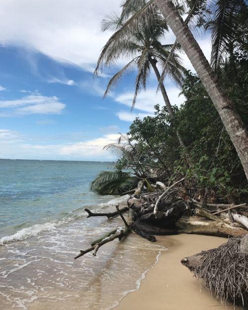 Costa Rica: 8-day itinerary (Central + Caribbean Coastline) — cones'n'rods // travel to Costa Rica, explore Costa Rica, Caraibes travel, Caraibes cruise, what to do in Costa Rica, Costa Rica tips, Costa Rica recommendations