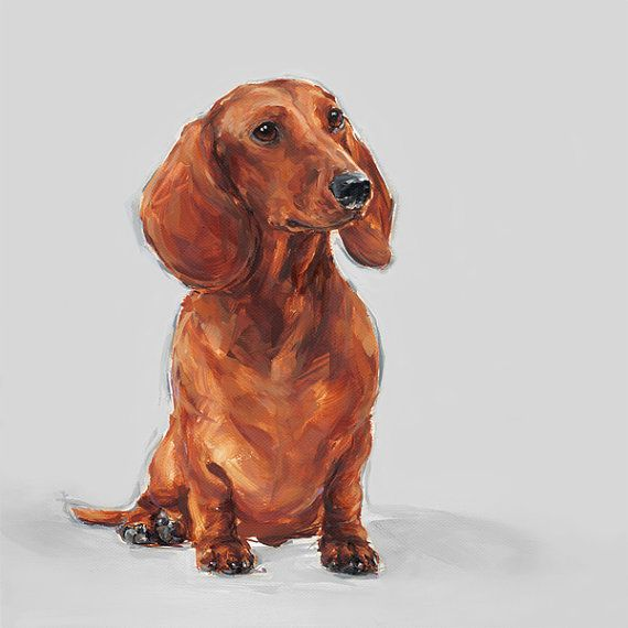 Red Dachshund art print  Ltd. Ed Collectable no. 9 by paintmydog, £60.00