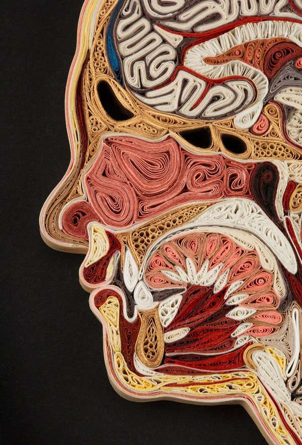 Paper-rolled anatomy by Lisa Nilsson; These pieces are made of Japanese mulberry paper and the gilded edges of old books. They are constructed by a technique of rolling and shaping narrow strips of paper called quilling or paper filigree.